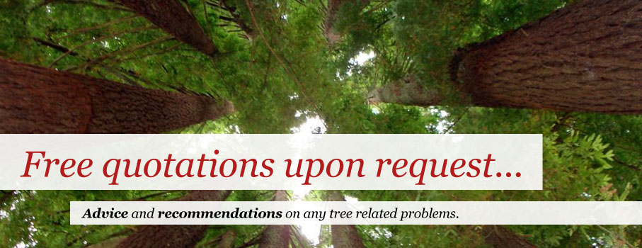 Free quotations upon request